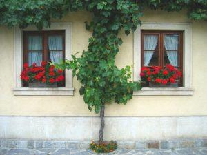 Wohnungen in der Steiermark